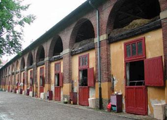 Horseriding-Monza