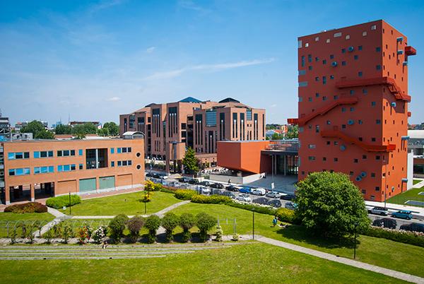 Iulm_university