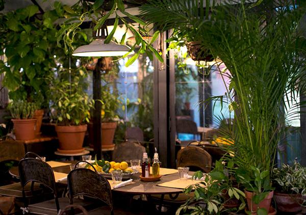 Patio_13_giugno_restaurant