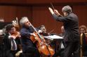 Mario Brunello, Cello