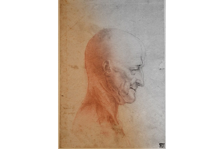 """A drawing from the exhibition """"Leonardo and his legacy"""""""
