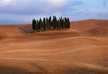 """An extract from the video """"Steve McCurry's Tribute to Italy"""" (c) Steve McCurry"""